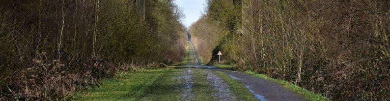 La vita è una Parigi-Roubaix
