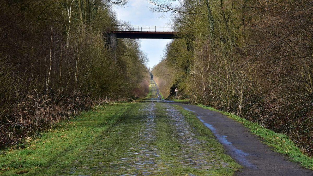 Parigi-Roubaix: foresta di Arenberg